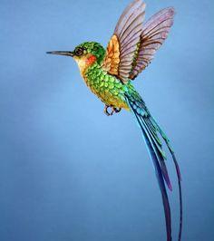 Afbeeldingsresultaat Voor Foto Kolibrie