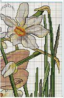 "narcissus fairie 3 (162) Gallery.ru / geminiana - Альбом ""126"""