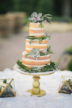 STUDIO DBI - naked cake with succulents and herbs