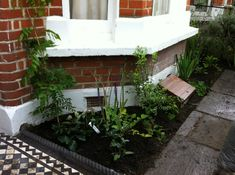 Front garden planting and black & white checkered path