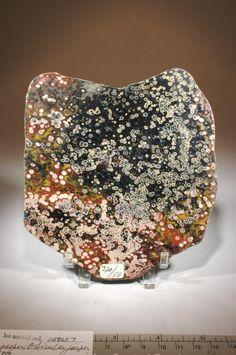 polished slice of obicular jasper Jasper Rock, Floral Tie, Objects, Polish, Accessories, Vitreous Enamel, Nail, Nail Polish, Nail Polish Colors