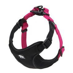 Padded-Nylon-Adjustable-Harness-Vest-Pet-Safety-Training-For-Medium-Large-Dog