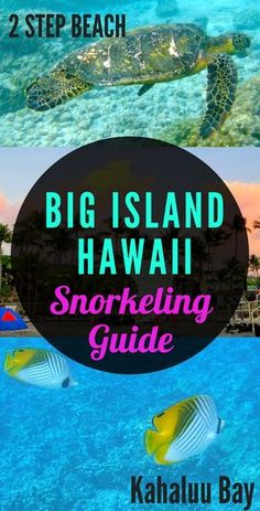 Big Island Hawaii Guides - 2 Step beach is the perfect spot for snorkeling because it is full of marine life, has crystal clear waters, flourishing coral and in the mornings, you may even spot dolphins! Get a guide to visiting 2 Step on the blog.