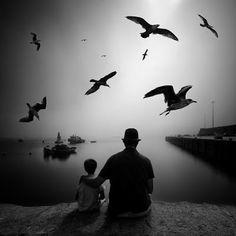 chou-genou-caillou: Des ailes et des mots...