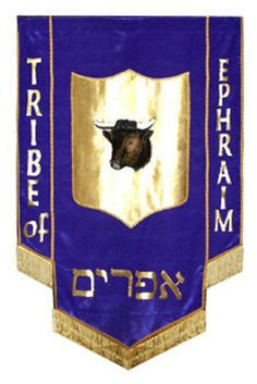 """EPHRAIM - Israel extended his right hand, laid it on Ephraim's head though he was younger and his left hand on Manasseh's head....So he blessed them that day, saying, """" By you shall Israel bless saying, 'May god make you like Ephraim and like Manasseh'"""" -- and he put Ephraim before Manasseh. See Genesis 48:13 - 20"""
