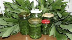 Pesto z czosnku niedzwiedziego Conservation, Healing Herbs, Korn, Preserves, Cucumber, Detox, Mason Jars, Pickles, Remedies