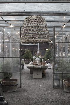 Shopper's Diary: Christmas in Stockholm at Zetas Tradgard: Gardenista