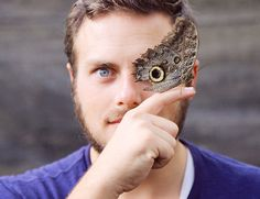 This butterfly has the most perfect camouflage eyes on its wings » Lost At E Minor: For creative people