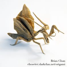Flying Mantis Origami by Brian Chan / Chosetec via Flickr.