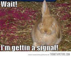 Signal Please!