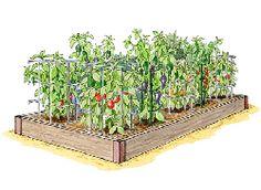 Kitchen Garden Planner - Preplanned Gardens - Mediterranean Garden, 2x4