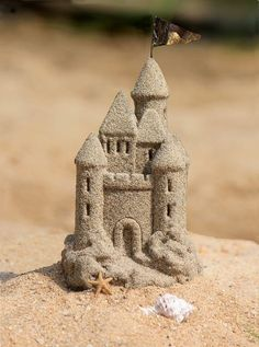 Tiny castle in the sand....
