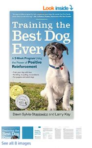 Teaching your puppy is about building your relationship with your dog as well as setting up boundaries. Be firm yet consistent and you'll see remarkable results in your dog training adventures. Best Dog Training Books, Dog Training Tips, Leash Training, Training Collar, Crate Training, Training Pants, Potty Training, Stop Dog Barking, Easiest Dogs To Train