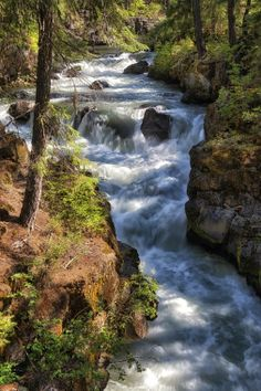 Rogue River of southern Oregon by Dennis Hoffbuhr