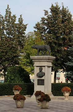 """""""Wolf of the Capitol"""" statue - Galati, Jud. Romulus And Remus, Bucharest, Great Places, Wolf, Paradise, Statue, Vacation, Country, Beautiful"""