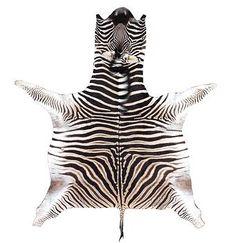 design, contemporary, zebra rug, zebra hide, Forsyth, zebra