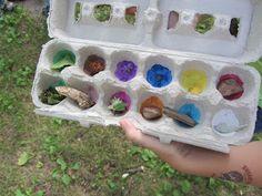 The Unlikely Homeschool: Natural Start to Nature Study.  Ideas and links @UnlikelyHS