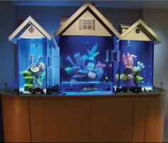 House shaped fish tank