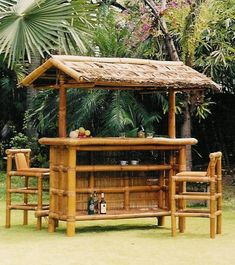Tiki bar. back deck