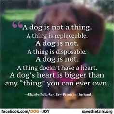 """A dog is not a thing. A thing is replaceable. A dog is not. A thing is disposable. A dog is not. A thing doesn't have a heart. A dog's heart is bigger than any ""thing"" you can ever own."""