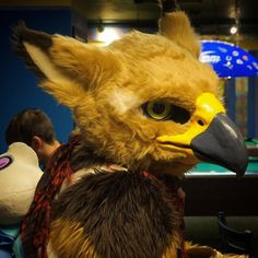 "raccoonrat: ""Brrrd. :> (Taken at DG Furbowl) #furry #furries #fursuit #fursuiter #gryphon #bird """