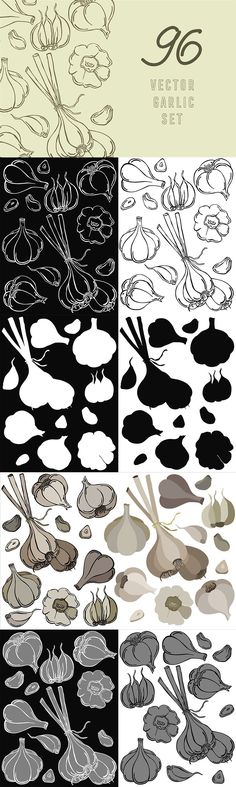Vegetable Design, Garlic, Silhouette, Illustration, Cards, Color, Colour, Illustrations, Maps