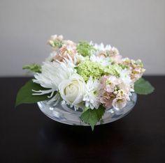 Cardamomo: Grazie dei fiori!