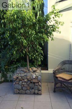 Gabion planter using 750 x 750 x 375mm gabion basket http://www.gabion1.com