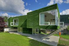 YUP - this house is Clad Entirely in Fake Grass