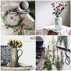 #FourIAdoreFriday Feature . Hello Friday friends.. . . Thank you ALL ..(always).. for sharing your quiet moments in the Four I Adore feed. Here are four we.simply adore.. . Please join @prairiegirlstudio and I in celebrating this weeks feature four. .  @brayscottage  @alajamie  @lynn_palazzo  @permillion44 . . To play along (any day of the week)...simply tag your still moments with #fouriadorefriday  . . xo
