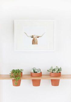 DIY Hanging Planter Shelf #diy #tutorial #planter