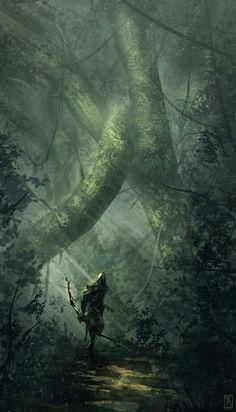Floresta densa e Arqueiro