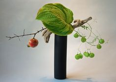 Ikebana by Keith Stanley (Pomegranate branch, hosta, and balloon vine)