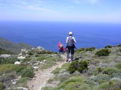 Hiking along the old Customs Officer Way, Centuri, Corsica, France