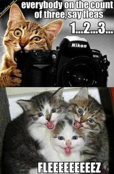 Funny Pictures of the day -90 pics- Fleeee...Eeeez