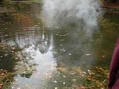 Huge Chunk of Sodium in Pond