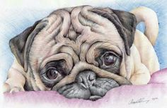 Reserved print of my original ballpoint pen drawing of a pug