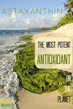 Astaxanthin is the most POTENT antioxidant on the planet. Take it to protect against radiation, as an internal sunscreen, for vision improvement, and anti-aging. Amazing stuff!