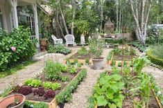 kitchen garden...