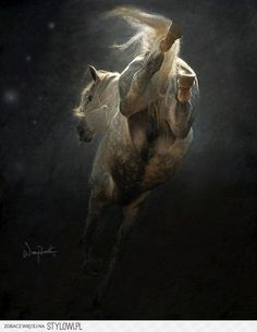 Love for horses... na Stylowi.pl