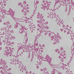 Orchid purple vines on a silver shimmer backdrop. A radiant orchid wallpaper to fall in love with 301-66907 Purple Botanical Vines - Pandora - Kenneth James Wallpaper