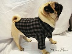 Black/Grey Checked Doggy Shirt with Collar and Cuffs. £10.00, via Etsy.