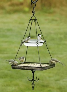 There are a lot of different kinds of cool bird feeders that may be bought these days. Moreover wild bird food is really cheap and will entice a number of birds. There are various species of birds that can you feed in this cute bird feeder ideas. Bird House Feeder, Wild Bird Feeders, Diy Bird Feeder, Humming Bird Feeders, Unique Bird Feeders, Bird Seed Feeders, Platform Bird Feeder, Bird Feeding Station, Homemade Bird Feeders