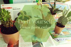 DIY   Vasos para catos. Dá uma vista de olhos a este faça você mesmo lá no blog :)