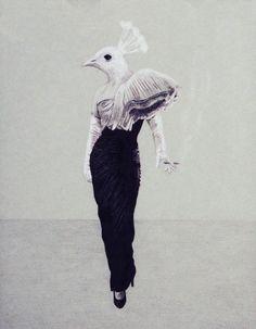 Flying Pheasants Bird Art Print Bird Illustration by StudioLavaan