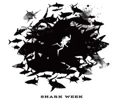 Mattson Creative. Discovery Channel Shark Week illustration. mattsoncreative.com