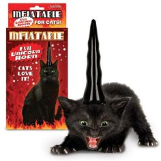 Inflatable evil unicorn horn for cats.   My cat would love this so much that he would probably stab me with it.