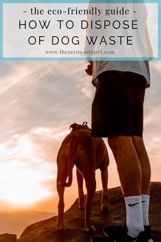 """How to Dispose of Dog Poop the """"Green"""" Way: The Ultimate Guide to Eco-Friendly Pet Waste Management (Part - The Zero-Waste Pet Puppy Care, Dog Care, Love Your Pet, Dog Friends, Best Dogs, Eco Friendly, Zero Waste, Pets, Management"""