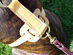 Leather Dog Harness for Tracking and Walking [H7###1073 Luxurious Leather Dog Harness] - $59.00 : Dog harness , Dog collar , Dog leash , Dog muzzle - Dog training equipment from Trusted Direct Source - Home, Dog Supplies
