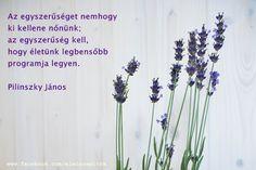 Pilinszky János gondolata az egyszerűségről. A kép forrása: Életszépítők